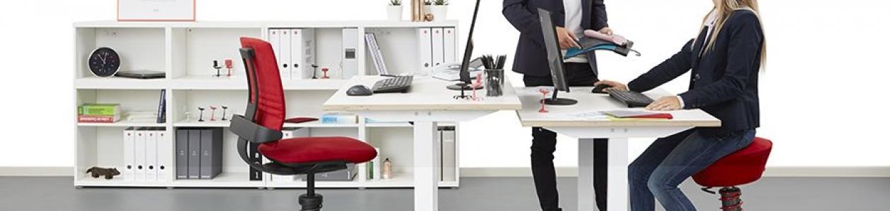 כיסא ברכיים או כיסא ארגונומי? השוואה בין שני סוגי הכיסאות